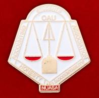 """Значок """"Нигерийской Ассоциации Студентов Факультетов Бухгалтерского Учета"""""""
