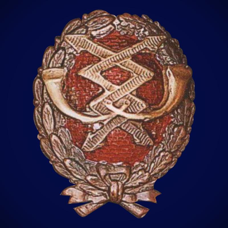 Знак Красного военного связиста