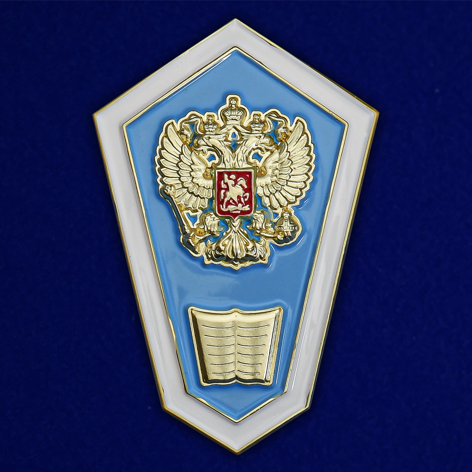 Знак Об окончании педагогического ССУЗа РФ