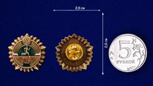 Бронзовый знак ГТО - сравнительный размер